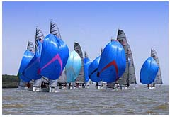 A racing fleet on the Crouch